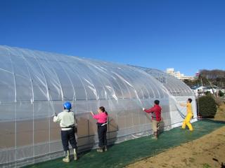 サンホープ農園14
