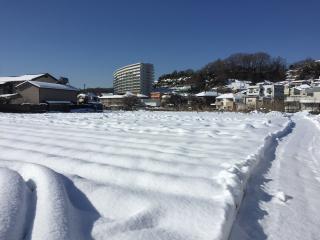 20180123 一面雪景色1